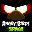 space-angry-birds
